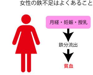 女性の鉄不足